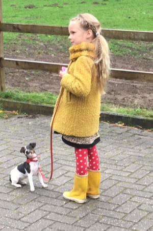 Ook voor de puppycursus geldt: Jong geleerd is oud gedaan.